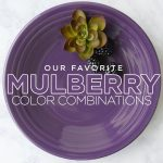 Fiesta Mulberry Color Combinations Guide